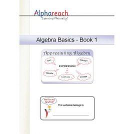 Algebra Basics Workbook 1