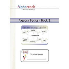 Algebra Basics Book 3