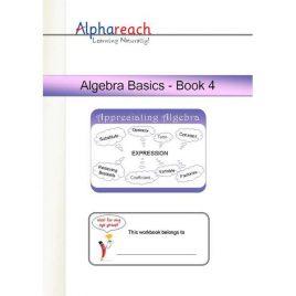 Algebra Basics Book 4