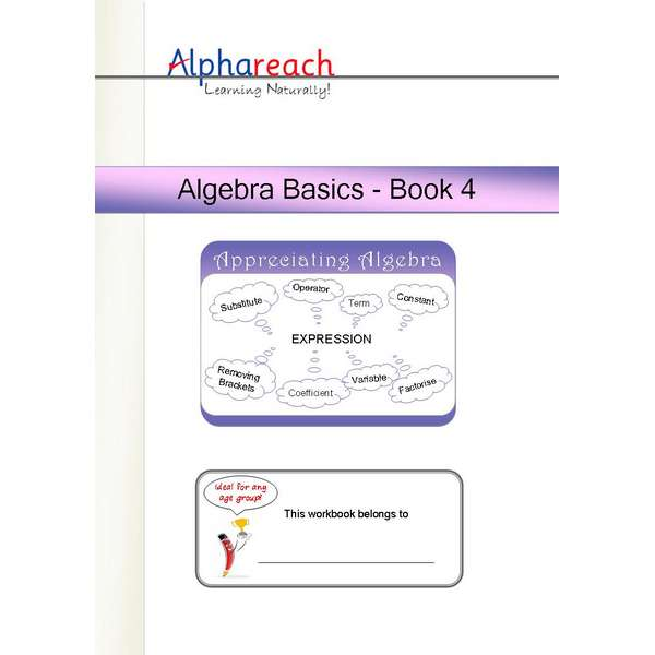 Algebra Basics Book 4