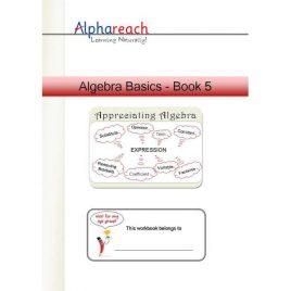 Algebra Basics Book 5