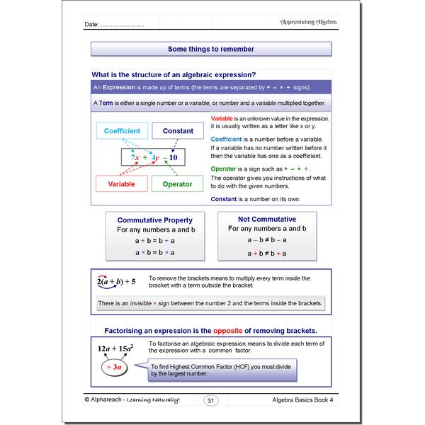 Algebra Basics Bk4_pg31_W