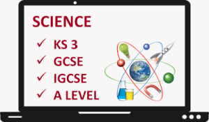 Online Learning Science